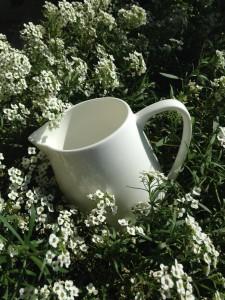 Porcelana blanca y flores